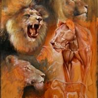 Lions - Michael Rousseau - 2012